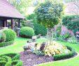 Zierkies Garten Neu Kleinen Garten Gestalten — Temobardz Home Blog