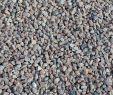 Zierkies Garten Neu Schottischer Granit Splitt 16 22 Mm Rot Grau