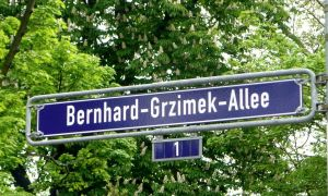 25 Schön Zoologischer Garten Frankfurt Reizend