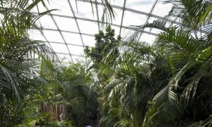 25 Neu Zoologischer Garten Leipzig Luxus